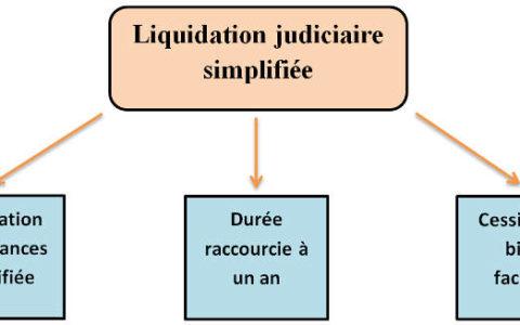 Liquidation judiciaire simplifiée EURL